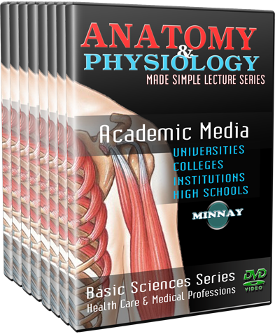 Anatomy & Physiology DVDs and Videos | Minnay Worldwide Inc