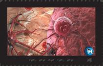 Pathophysiology DVDs instant access